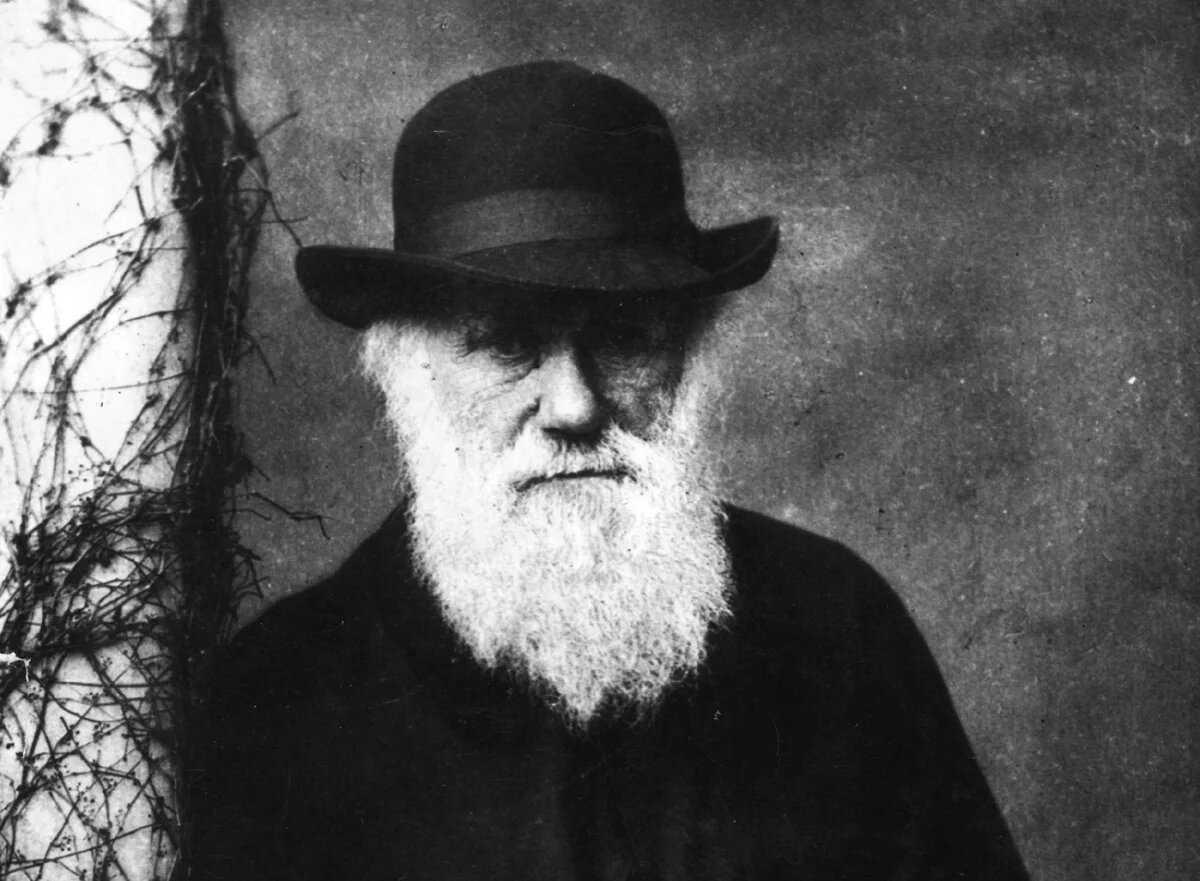Чарльз Дарвин: научные достижения человечества