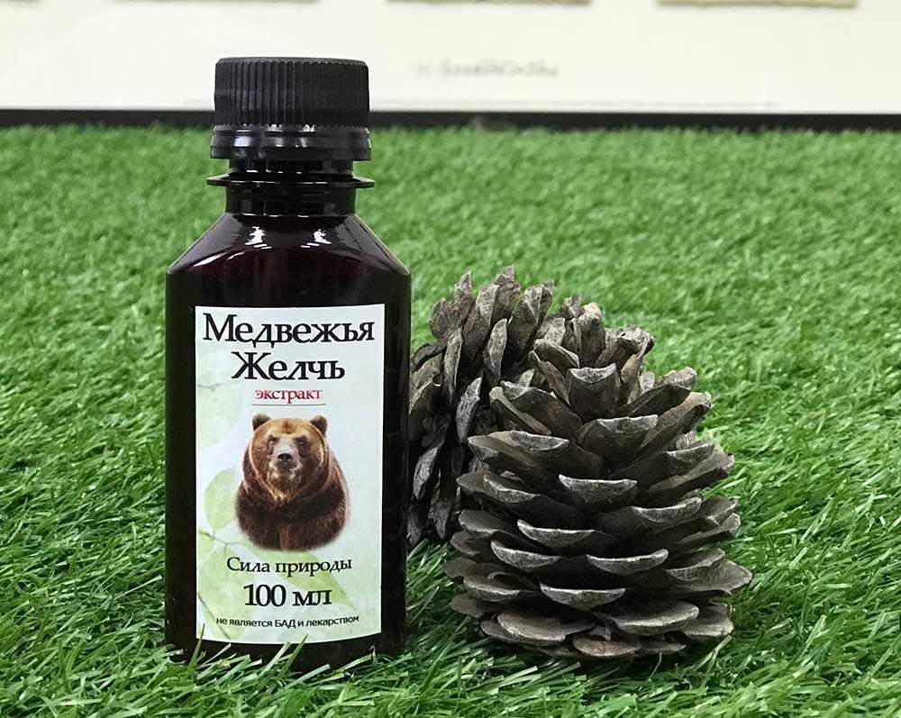 Медведья желчь: лечение, эффективность