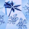 Почему снежинки имеют разную форму