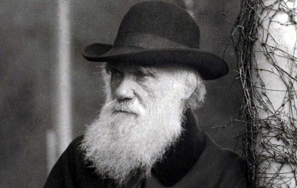 Чарльз Дарвин: книги