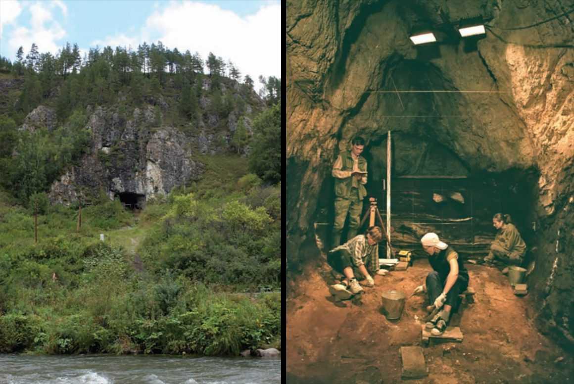 Денисовский человек: кто он такой и чем отличается от неандертальца
